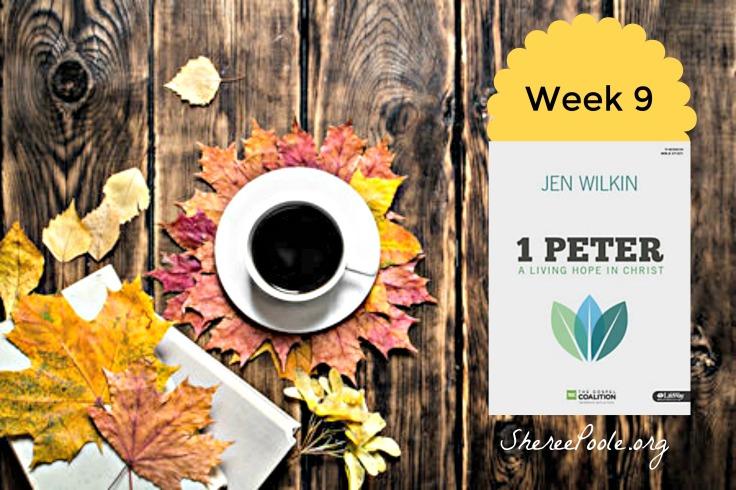 week-9-blog-photo-final