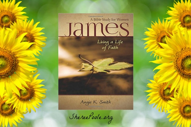 james-intro-and-registration-sunflower-pic